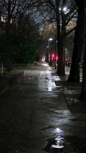 Vor Dir nur Regen 2