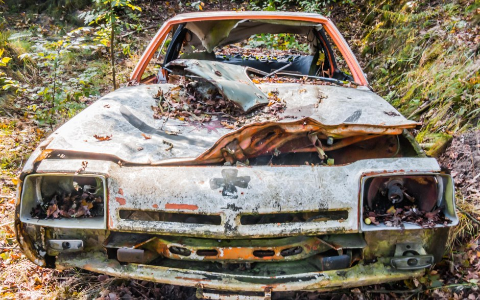 Schrottauto im Wald - junk car in the woods